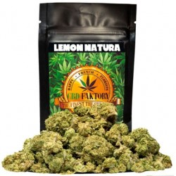 LEMON NATURA CBD